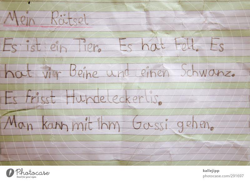 tierraten Hund Kind Tier Spielen Schule Linie lernen Papier Bildung schreiben Haustier Fragen Zettel Kindererziehung Text Rätsel