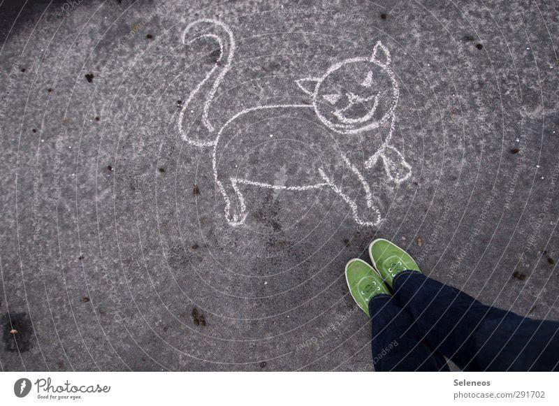 Lösung? Mensch Beine Fuß 1 Strassenmalerei Jeanshose Schuhe Tier Haustier Katze Stein Beton stehen Tierliebe Kreide Zeichnung Asphalt Farbfoto Außenaufnahme Tag