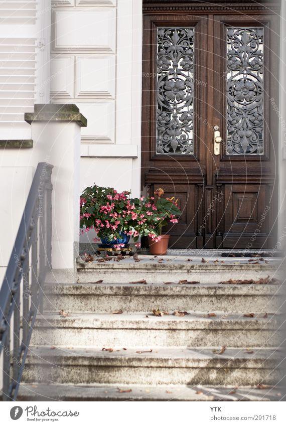 Finally Home schön Stadt Pflanze ruhig Haus Wand Leben Mauer Gebäude Tür Fassade Wohnung Treppe Häusliches Leben Idylle Schutz