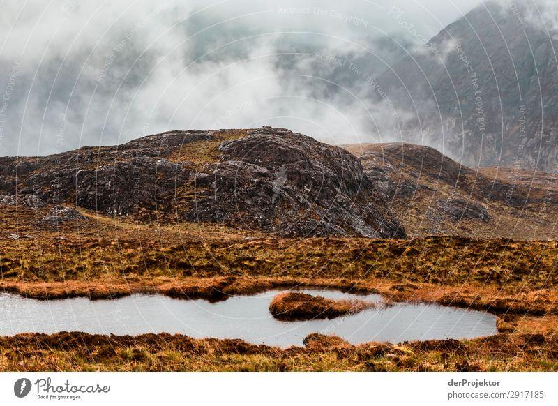 Isle of Skye am Tag Ferien & Urlaub & Reisen Tourismus Ausflug Abenteuer Ferne Freiheit Berge u. Gebirge wandern Umwelt Natur Landschaft Pflanze Tier Frühling