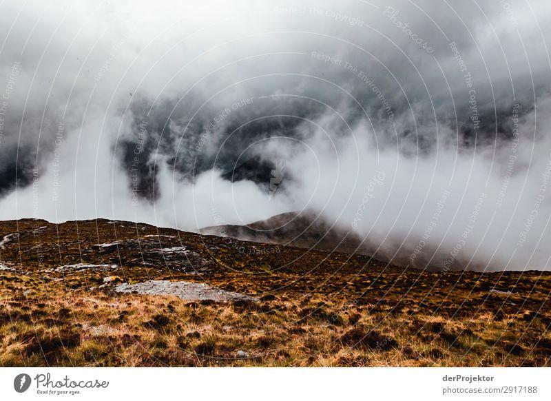 Isle of Skye in den Wolken Ferien & Urlaub & Reisen Natur Pflanze Landschaft Tier Ferne Berge u. Gebirge Umwelt Frühling kalt Tourismus Freiheit Felsen Ausflug