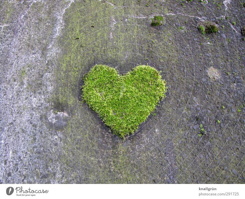 Natürlich Umwelt Pflanze Moos Grünpflanze Mauer Wand Fassade Zeichen Herz Wachstum außergewöhnlich natürlich grau grün Gefühle Freude Liebe Romantik einzigartig