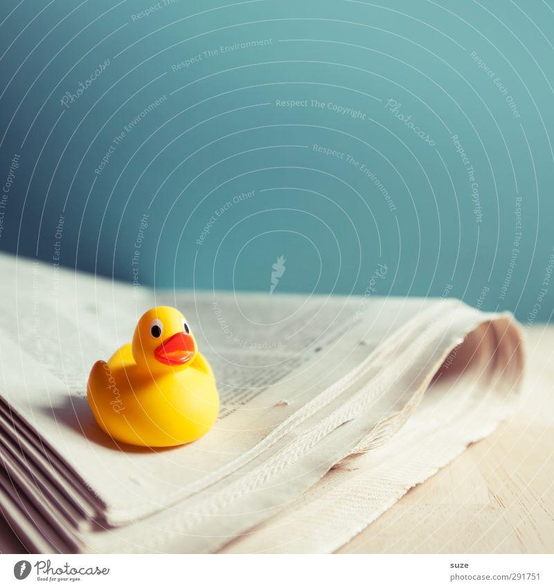 Zeitungsente blau schön Freude gelb lustig klein außergewöhnlich Freizeit & Hobby Lifestyle Kommunizieren niedlich Papier lesen Kreativität Idee Bildung