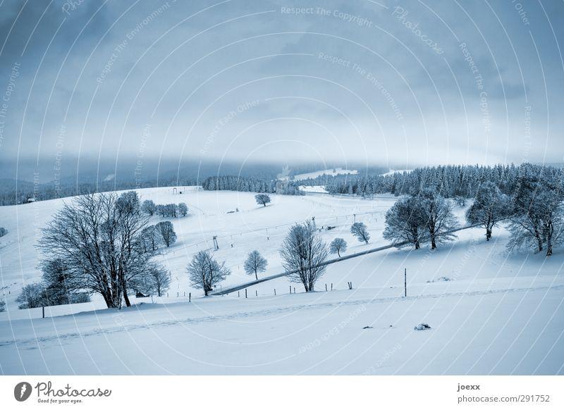 Schauinsland Landschaft Himmel Wolken Horizont Winter Wetter Schnee Baum Feld Hügel Berge u. Gebirge Straße kalt blau schwarz weiß Idylle Farbfoto
