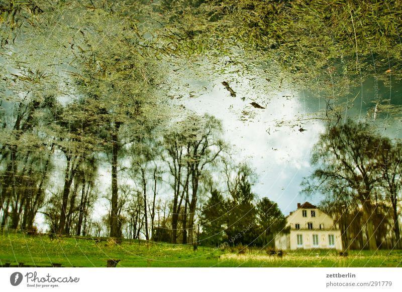 Sacrow April Berlin Erholung Frühling Garten Park Wald Waldspaziergang See Teich Wasseroberfläche Reflexion & Spiegelung Burg oder Schloss Gutshaus Haus Villa