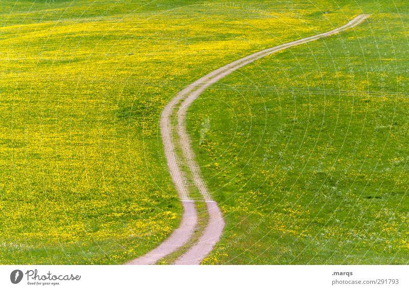 Überland Natur grün schön Sommer Pflanze Landschaft gelb Wiese Wärme Gras Frühling Wege & Pfade Freiheit Verkehr Schönes Wetter Ausflug