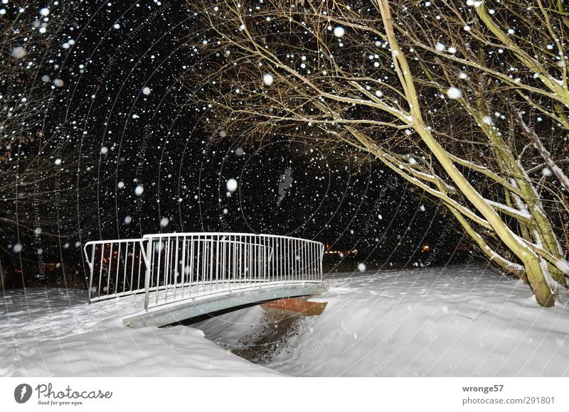 Kleine weiße Brücke grün Stadt Baum Winter schwarz kalt Schnee Schneefall Deutschland Europa Brückengeländer Teich Schneeflocke Stadtrand