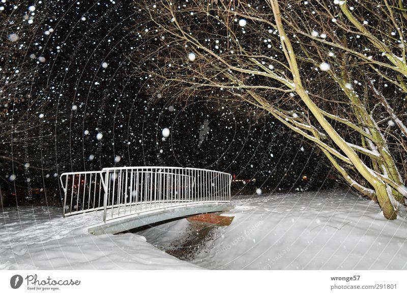 Kleine weiße Brücke grün Stadt weiß Baum Winter schwarz kalt Schnee Schneefall Deutschland Europa Brücke Brückengeländer Teich Schneeflocke Stadtrand