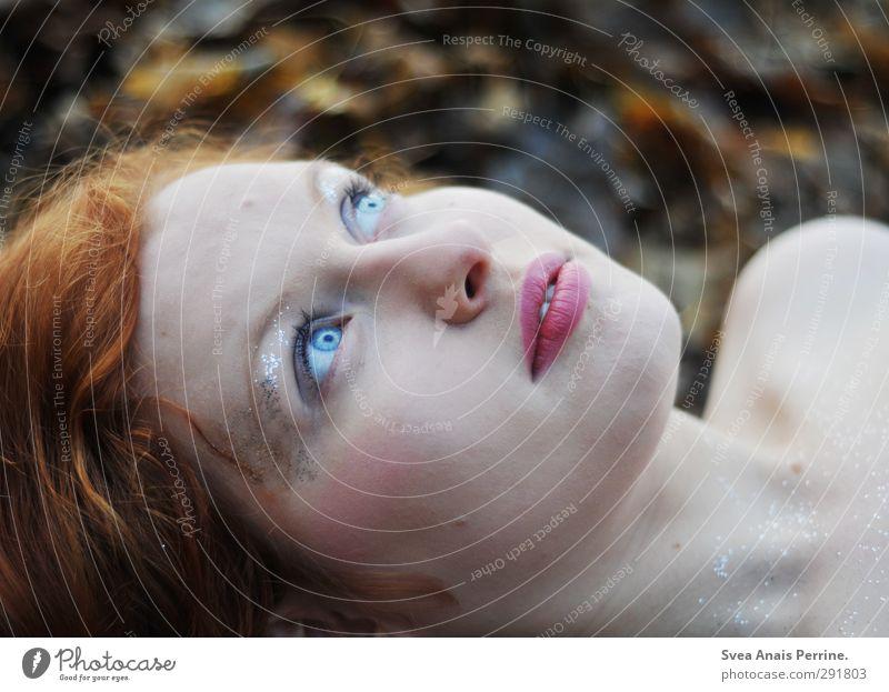 am boden. Mensch Kind Natur Jugendliche schön Blatt nackt Wald Gesicht Junge Frau Umwelt Auge Liebe Herbst feminin Haare & Frisuren
