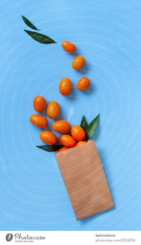 Kumquat-Früchte auf blauem Hintergrund Frucht Ernährung Vegetarische Ernährung Diät exotisch Sommer Menschengruppe frisch modern natürlich saftig gelb Farbe