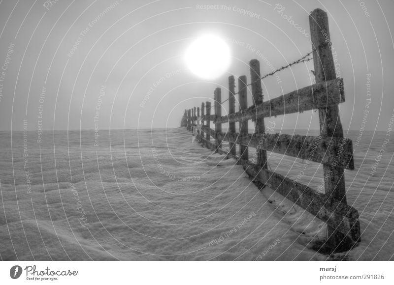 Geteilt Himmel Natur Sonne Einsamkeit Winter Landschaft kalt Schnee Herbst Traurigkeit Holz Eis Nebel leuchten Frost Trauer