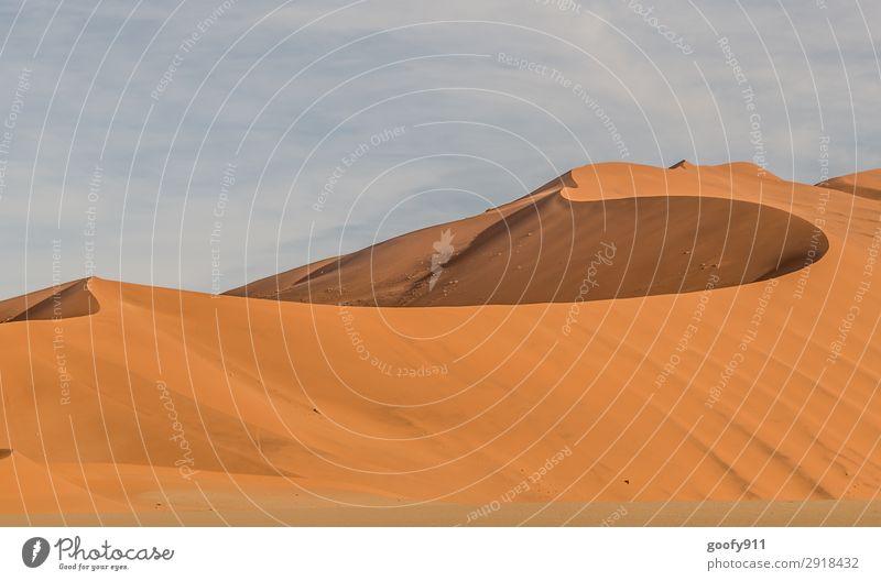 Große Sanddühne Ferien & Urlaub & Reisen Tourismus Ausflug Abenteuer Ferne Freiheit Safari Expedition Umwelt Natur Landschaft Urelemente Erde Himmel Wärme Dürre