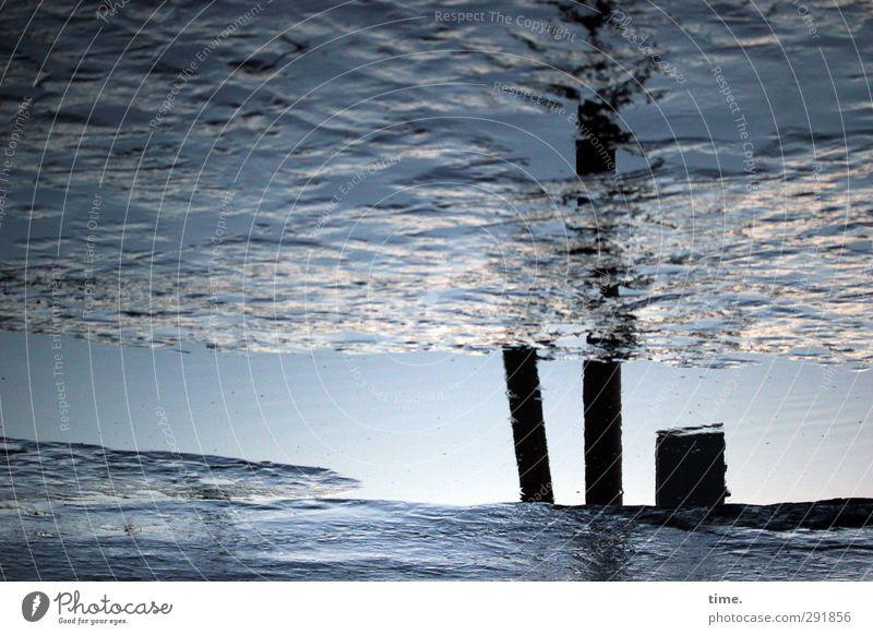 Flowjob Himmel Wasser Ferne Umwelt Wege & Pfade Traurigkeit Küste Sand Schönes Wetter Perspektive Wandel & Veränderung Seeufer Neugier Baumstamm Flussufer