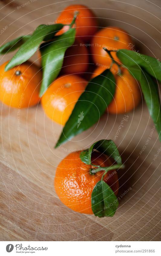 Orangen Natur schön Farbe Blatt Leben Gesunde Ernährung Gesundheit orange Lebensmittel Frucht Wachstum frisch einzigartig Küche