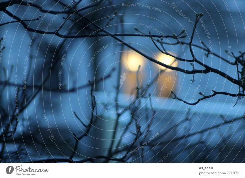 Jemand da? blau Baum Winter schwarz Haus gelb Fenster kalt Wärme Holz Stein Eis orange Fassade Klima Energiewirtschaft