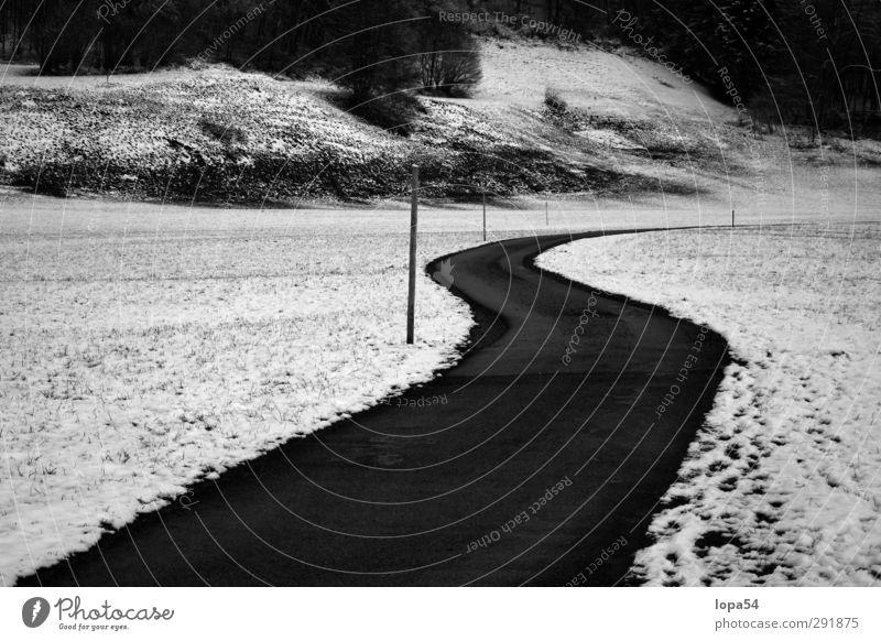 Road Winter Schnee Winterurlaub wandern Umwelt Natur Landschaft Wiese Feld Straße Wege & Pfade frieren kalt schwarz weiß Einsamkeit Ferne Schwarzweißfoto