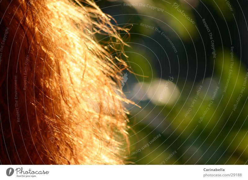 Red Hair rot Wellen Frau Haare & Frisuren orange Sonneneinstrahlung Farbe