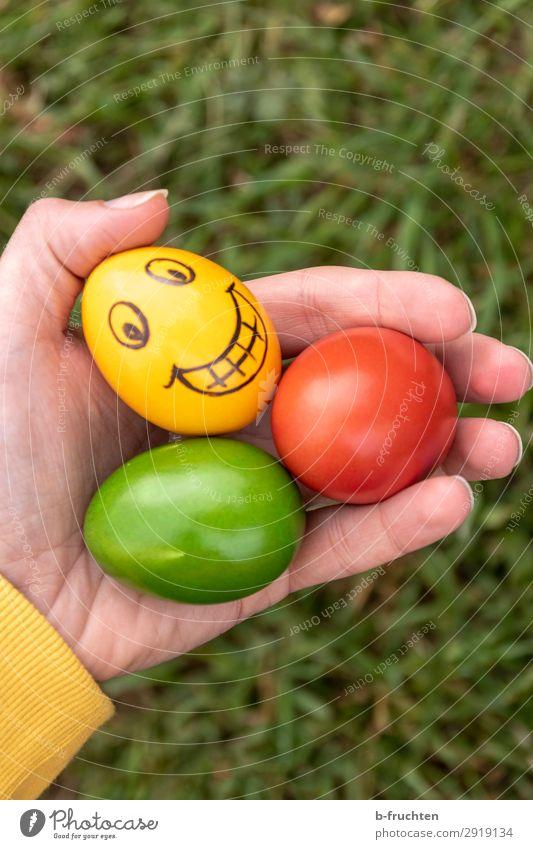 Bunte Ostereier, lachendes gelbes Ei Lebensmittel Ernährung Bioprodukte Mann Erwachsene Hand Finger wählen beobachten festhalten Fröhlichkeit frisch Gesundheit