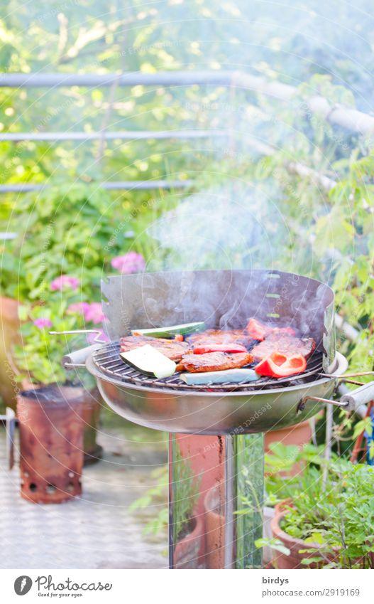 grillen auf Balkonien Fleisch Gemüse Ernährung Schönes Wetter Pflanze Blume Grill Holzkohle Rauch Rauchen authentisch positiv gelb grün rot silber Freude