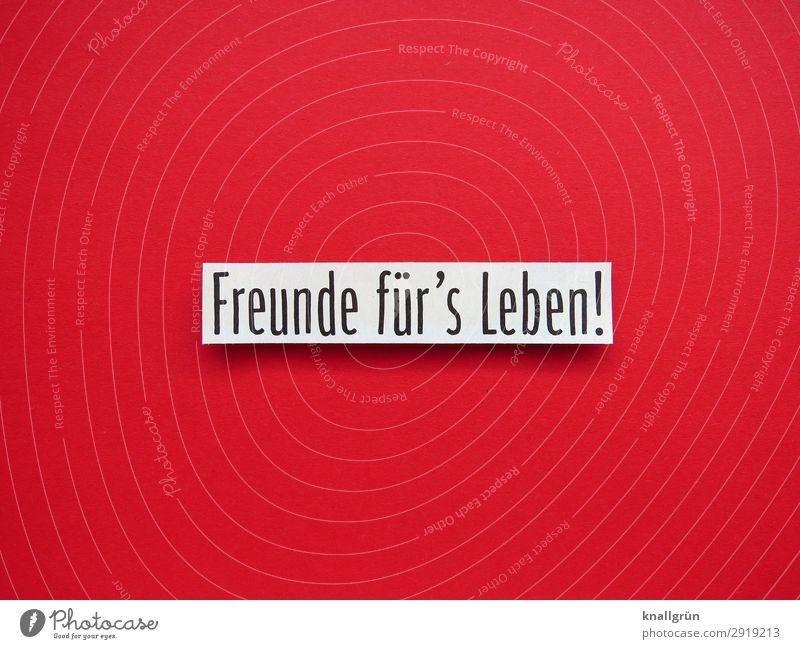 Freunde für's Leben! Schriftzeichen Schilder & Markierungen Kommunizieren Zusammensein rot schwarz weiß Gefühle Glück Zufriedenheit Geborgenheit Sympathie