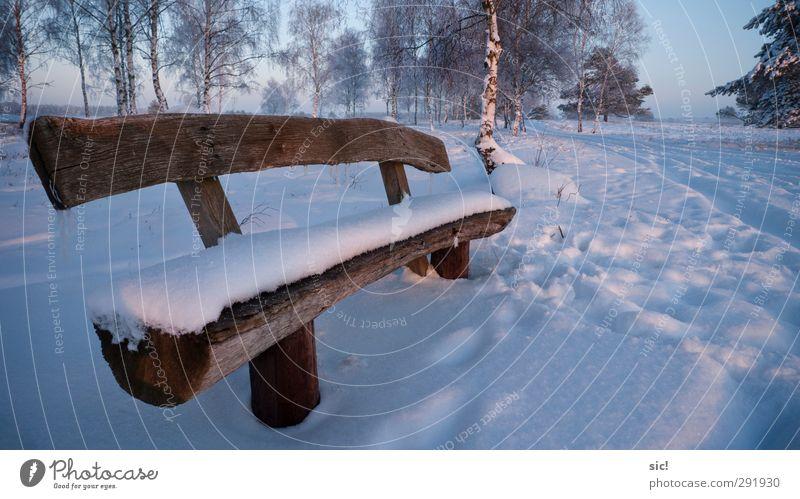 Schneebank blau Ferien & Urlaub & Reisen weiß Baum Winter Landschaft Erholung kalt Bewegung Eis sitzen wandern Tourismus Ausflug Frost