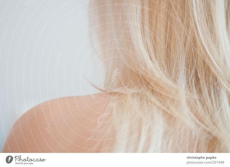 haut und haar Frau schön nackt Erwachsene Erotik feminin Haare & Frisuren Haut blond Rücken nah Körperpflege langhaarig sensibel Haarspitze