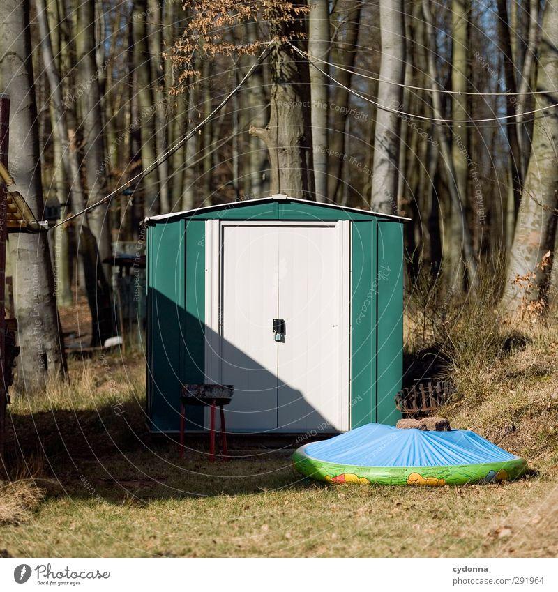 Klein aber fein Lifestyle Garten Umwelt Natur Herbst Wiese Wald Hütte Tür ästhetisch Beratung Einsamkeit entdecken geheimnisvoll Idylle einzigartig Leben
