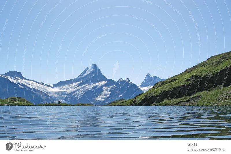 Schreckhorn Himmel Natur blau grün Wasser Sommer Landschaft Berge u. Gebirge Ausflug Alpen Wolkenloser Himmel Grindelwald Bachalpsee