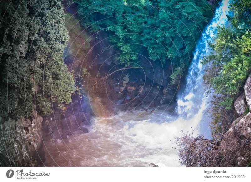 Regenbogenfall Natur Pflanze Baum Erholung Landschaft ruhig Berge u. Gebirge Umwelt Gefühle Stimmung Felsen Zufriedenheit Lebensfreude Schönes Wetter Hoffnung