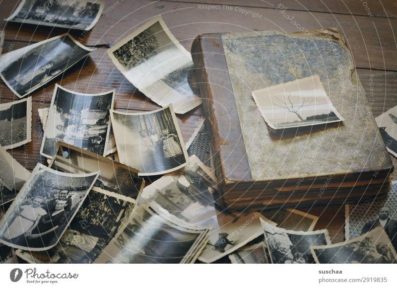alte fotos Fotografie Schwarzweißfoto Fotografieren analog Erinnerung Nostalgie Trauer Familienalbum Vergangenheit Vergänglichkeit Kindheit Kindheitserinnerung