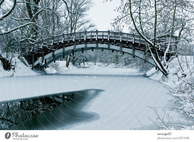 Winter im Stadtpark II Ausflug Schnee Eis Frost Baum Park Seeufer Adolf Mittagsee Magdeburg Deutschland Sachsen-Anhalt Europa Menschenleer Brücke kalt