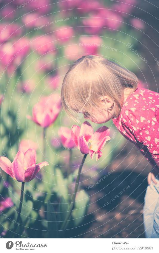 Ein Sommertag II Kind Mensch Pflanze Sonne Mädchen Gesicht Leben Umwelt Frühling Kopf Zufriedenheit Kindheit Schönes Wetter niedlich beobachten