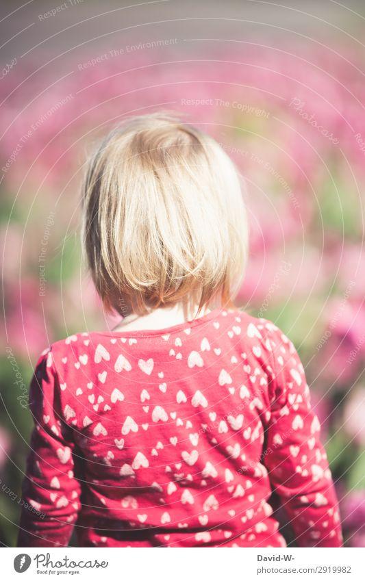Ein Sommertag IV Kind Mensch Natur schön Landschaft Sonne Blume Leben Wärme Umwelt feminin Kunst Kopf Denken blond