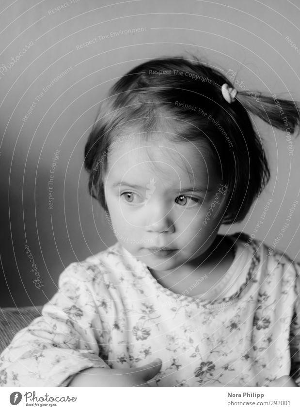 Fine Kindererziehung Kindergarten Kleinkind Mädchen Kindheit Gesicht 1 Mensch 1-3 Jahre T-Shirt Haare & Frisuren brünett Zopf glänzend Blick klein klug