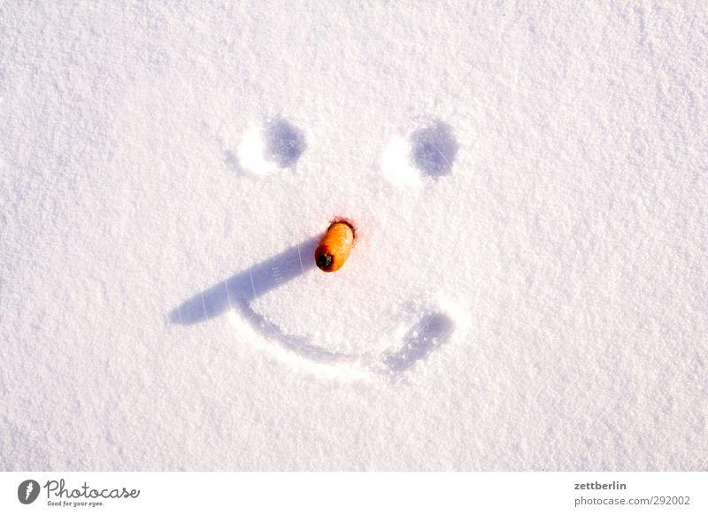 Winter Umwelt Natur Klima Klimawandel Wetter Schönes Wetter Eis Frost Schnee Lächeln lachen kalt Freude Fröhlichkeit Lebensfreude Dezember Januar Schneedecke