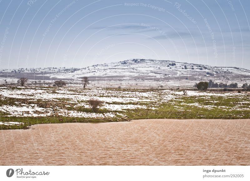 Eintägiger Winter Umwelt Natur Landschaft Pflanze Klima Klimawandel Wetter Gras Seeufer Israel Berge u. Gebirge Schneeschmelze Naher und Mittlerer Osten