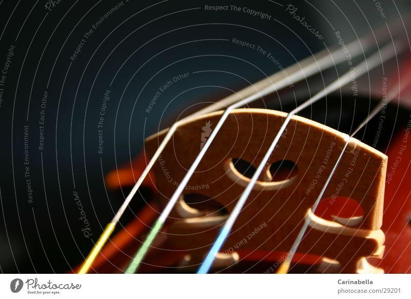Geige V Holz Dinge Steg Musikinstrument