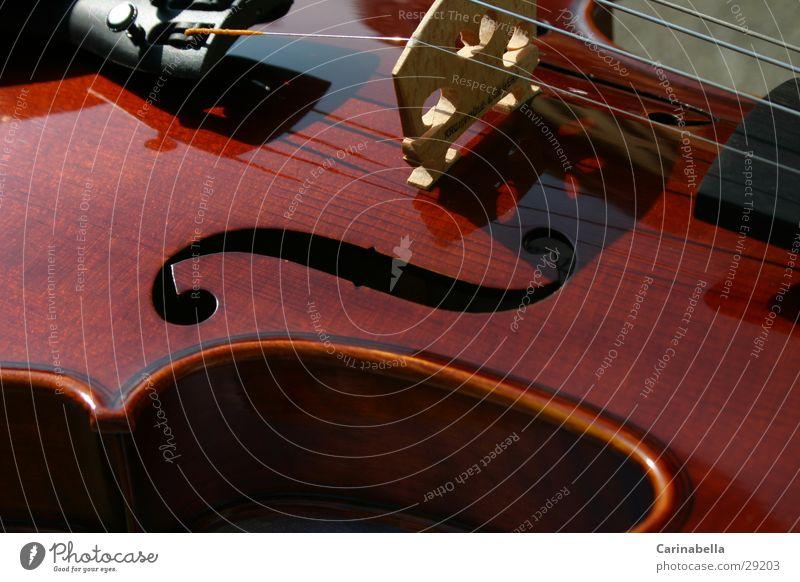 Geige II Holz braun Dinge Musikinstrument Saite Resonanz Resonanzkörper