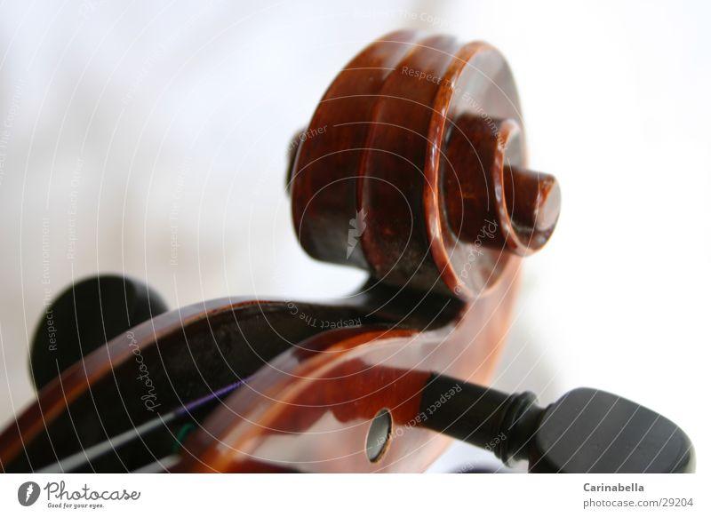 Geige III Musik Holz braun Dinge Schnecke Musikinstrument Saite Resonanz Resonanzkörper