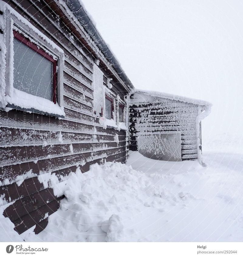gefühlte -20 Grad... Ausflug Winter Schnee Berge u. Gebirge Harz Brocken Haus Natur Landschaft Nebel Eis Frost Hütte Bauwerk Gebäude Mauer Wand Fenster
