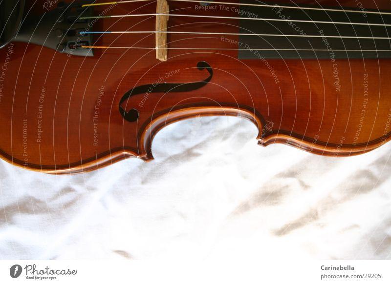 Geige I Musik Holz braun Dinge Steg Saite