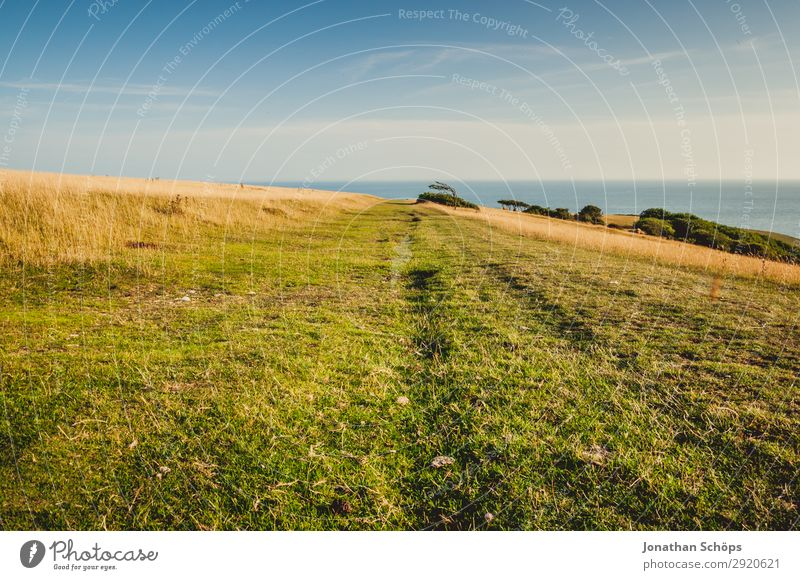 weites Feld an den Seven Sisters, England Himmel Ferien & Urlaub & Reisen Natur Sommer weiß Landschaft Meer Ferne Umwelt Wiese Küste Tourismus Felsen wandern