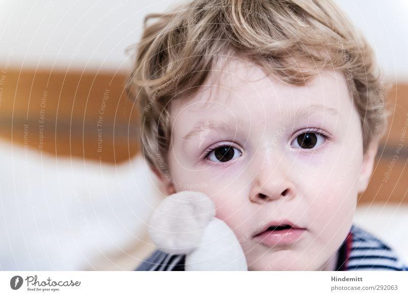 Emil Mensch Kind ruhig Gesicht Auge Junge Kindheit blond Mund niedlich T-Shirt Freundlichkeit Neugier Kleinkind Locken Müdigkeit