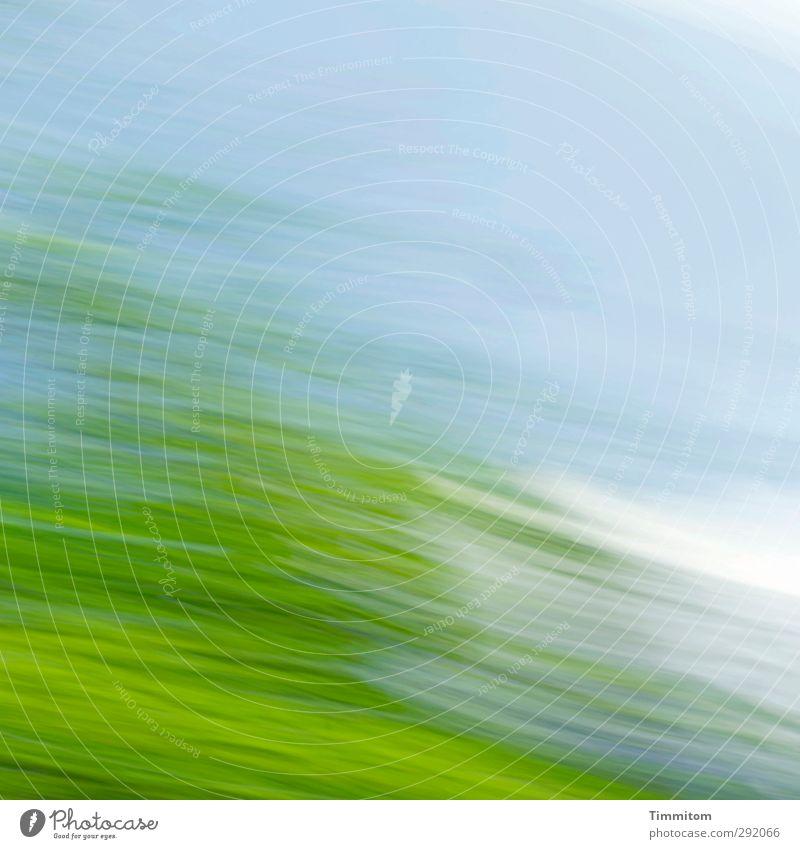 Das Leben ist Bewegung Himmel blau grün weiß Sommer Baum Wolken Gefühle frisch beobachten einfach positiv