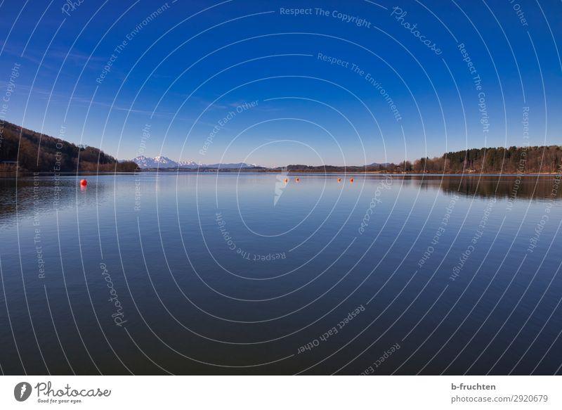Ruhe am See Umwelt Natur Landschaft Wasser Himmel Horizont Frühling Schönes Wetter Wald Hügel Alpen Berge u. Gebirge Seeufer Strand träumen frei blau Glaube