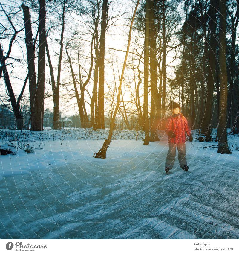 auf dem seerosenteich Mensch Kind Natur Mädchen Winter Landschaft Wald Umwelt Leben feminin Spielen See Eis Körper Kindheit Klima