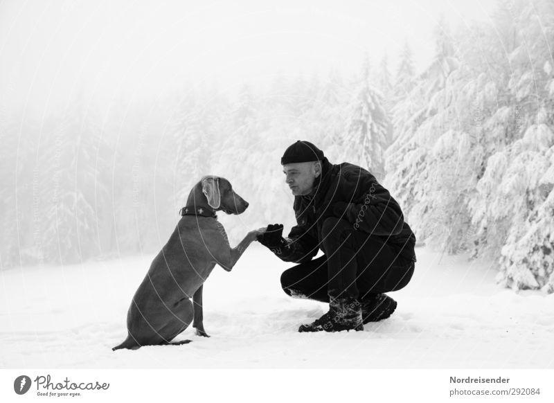Mann und Weimaraner Jagdhund im Winterwald Lifestyle Leben Schnee Winterurlaub Team Mensch Erwachsene Freundschaft 1 45-60 Jahre Klima Wetter Nebel Eis Frost