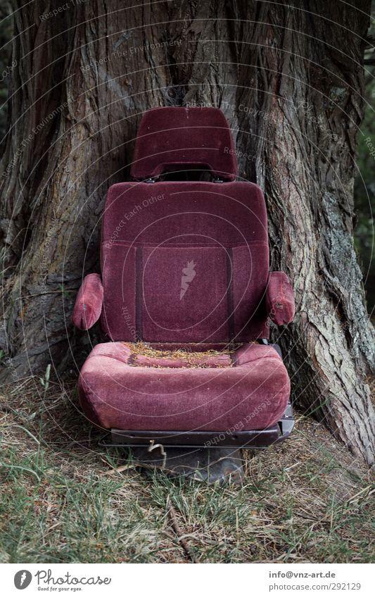 Chair Renovieren Umzug (Wohnungswechsel) Möbel Sessel Stuhl Umwelt Natur Erde Baum alt grau violett Flugangst Misserfolg Kinosessel Farbfoto Außenaufnahme