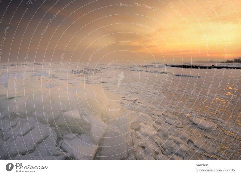 Eisberg Landschaft Himmel Wolken Sonnenaufgang Sonnenuntergang Winter Wetter Schönes Wetter Frost Schnee Küste Strand Bucht Ostsee gold weiß Holzpfahl erstarrt
