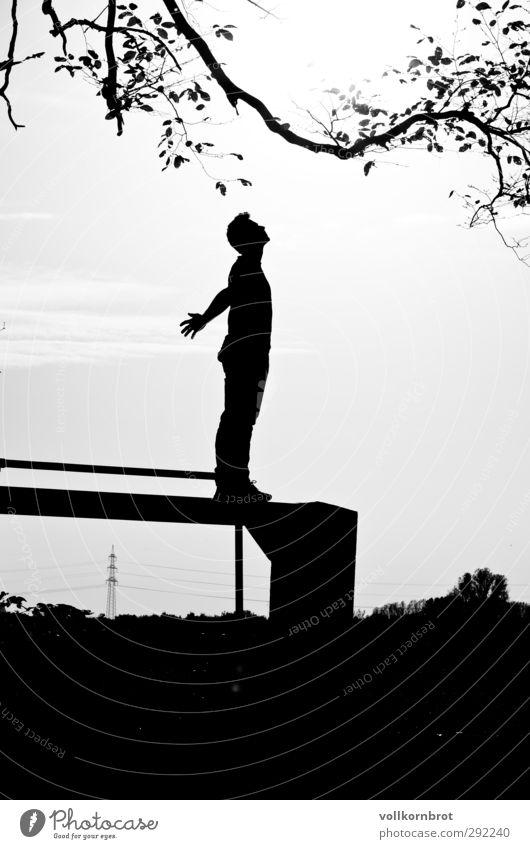 Freiheit Mensch maskulin Junger Mann Jugendliche 1 18-30 Jahre Erwachsene Natur Landschaft Himmel Wolken Blatt Ast stehen träumen Unendlichkeit Kraft